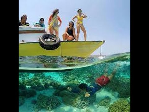 Video Trailers Luxury Holidays to Southeast Sulawesi Kendari Adventure Destination in Indonesia