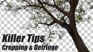 Photoshop Killer Tips | Cropping Defringe Hindi