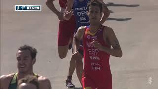 2019 Daman World Triathlon Abu Dhabi - Men