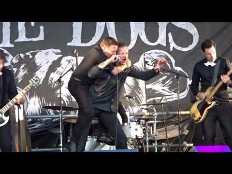 The Dogs - Mortal tragedy, live Skjærvafest i Kristiansund 2016