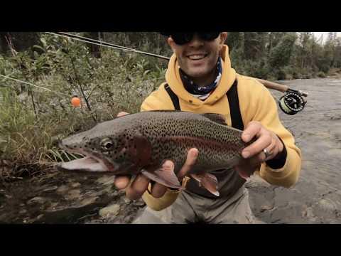 Alaska Roadside Trout Fishing