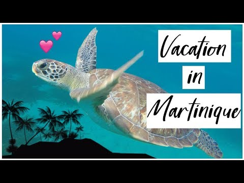 🌞 🌴 Vacation in Martinique 🌴 🌺