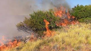 Incendio en Epuyen, mañana se podría circunscribir