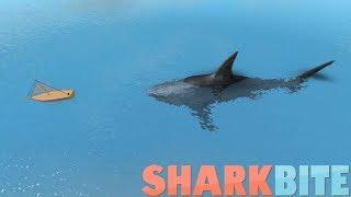 EATING DOM'S BOAT? w/ DomyBoy188| Roblox's Sharkbite