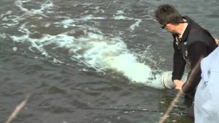 best ever iowa dnr trout stocking moorland pond fishing video by willcfish tips and tricks