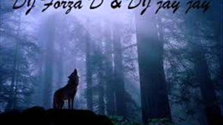 SOMMEN THE WOLF ( DJ Forza D ) M!X 2012 Mp3