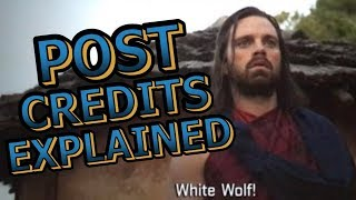 Black Panther Official Post Credits Scenes Explained Breakdown and Avengers Infinity War Set Up