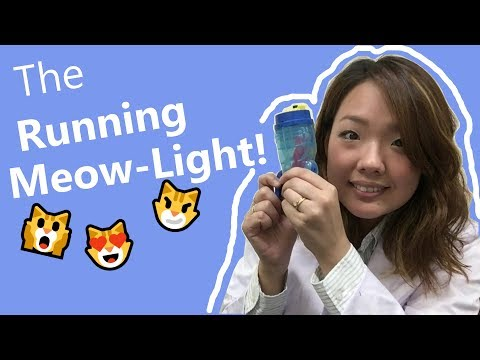 Running Meow Light!!! -product video- by ARTEC Co., Ltd.