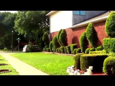 видео: Ландшафтный дизайн двора