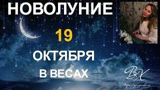 НОВОЛУНИЕ 19 ОКТЯБРЯ В Весах