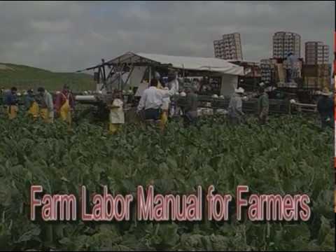 Farm Employers Labor Service (FELS) a Subscriber Organization