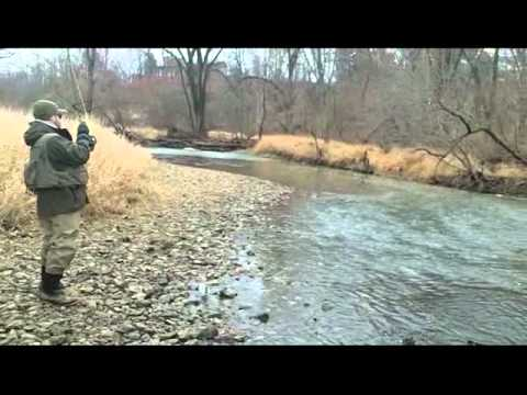 Root River Brown Trout.wmv