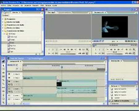 Video Tutorial Adobe Premiere Pro para principiantes / Nivel Básico / Español- Spanish