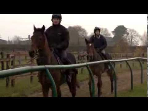 Newmarket jumpers feature