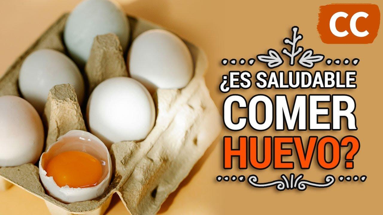 ¿Es Saludable Comer Huevo?   Ciencia de la Comida