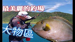 整海都是像臉盆大的魚!!一下子連咬3次 恐怖的拉力 !!