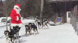 Santa At Eden Dog Sledding
