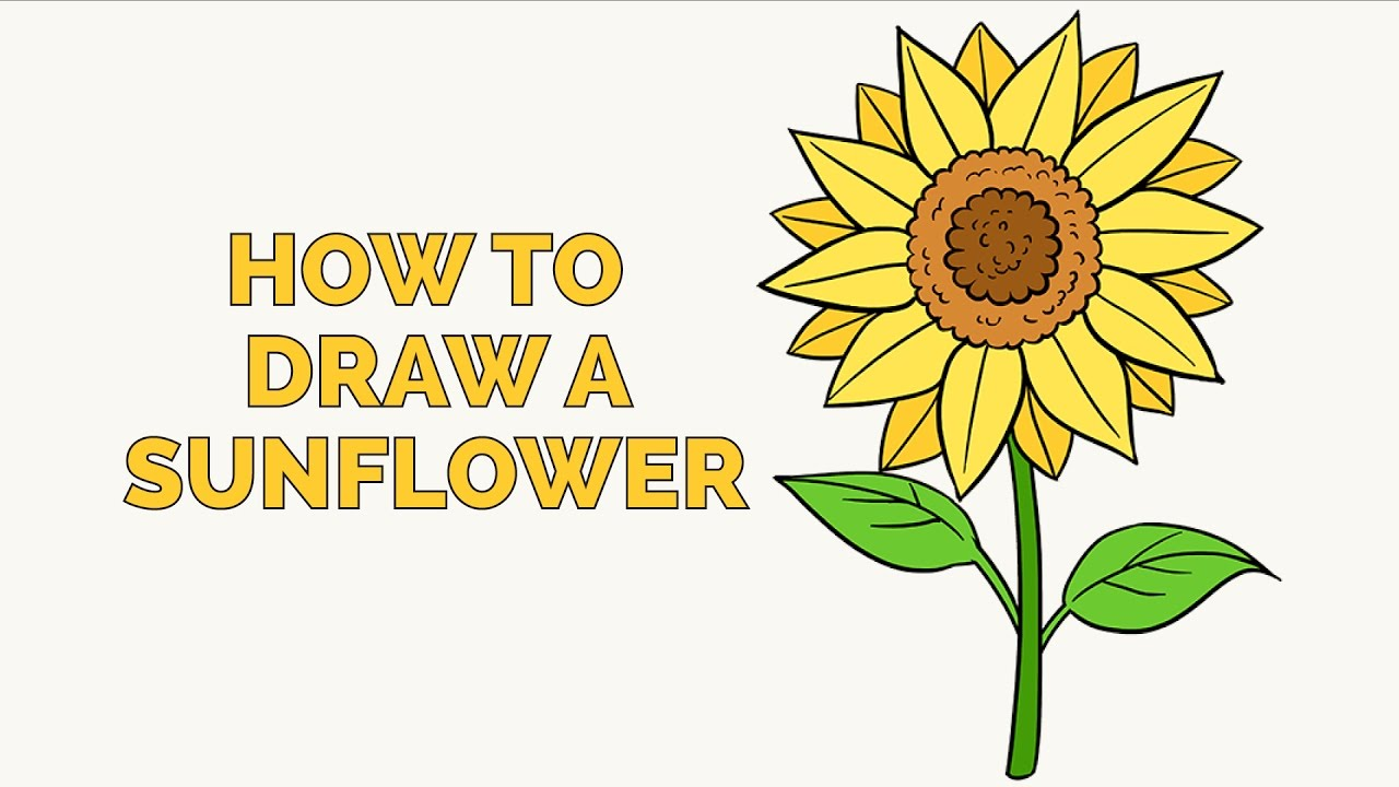 982dee8a2f3 How to Draw a Sunflower - Easy Step-by-Step Drawing Tutorial for Kids and  Beginners