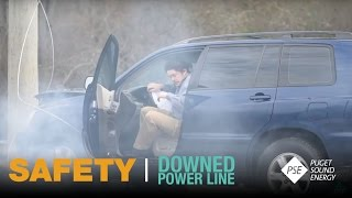 This Might Shock You: Downed Power Line Safety