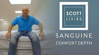 Restonic Scott Living Sanguine Euro Top Mattress Comfort Depth 3