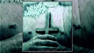 Infant Annihilator - The Palpable Leprosy of Pollution (FULL ALBUM 2012 HD) thumbnail