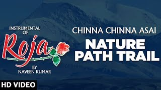 Roja Nature Path Trail || Chinna Chinna Asai || Instrumental Recreation of Roja By Naveen Kumar