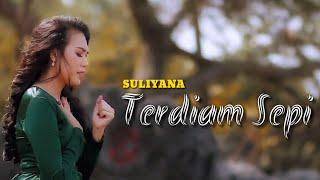 Suliyana - Terdiam Sepi (Lirik)
