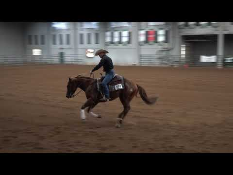FM Cash Colonel ridden by Preston Kent - IRHA Stallions Aug 2019
