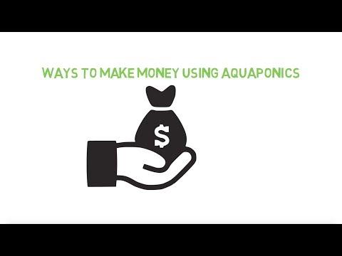 Ways to make money with aquaponics