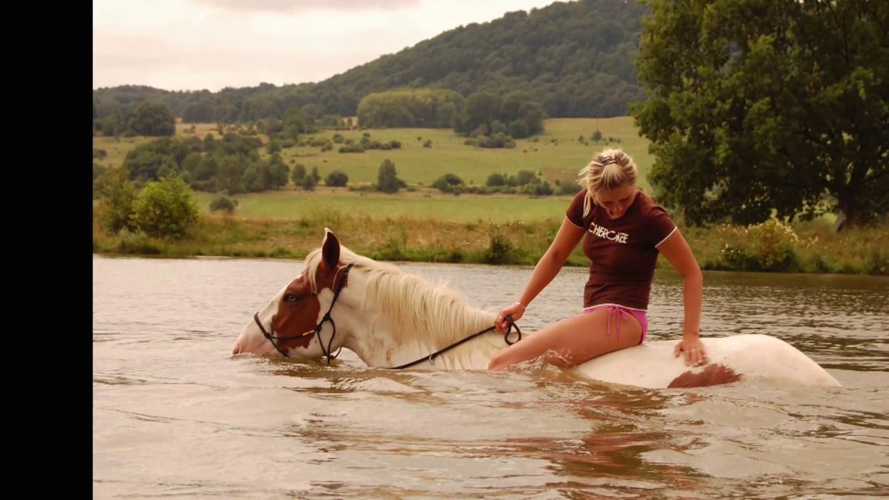 Aneta Krejcikova Poupata horse in balance ( andrea krejčíková )