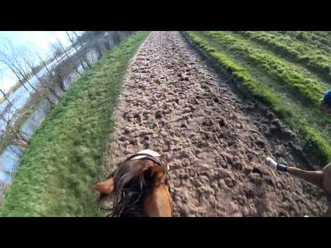 GOPRO pony racing gallops.