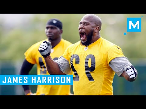 NFL Offseason Training with James Harrison | Muscle Madness