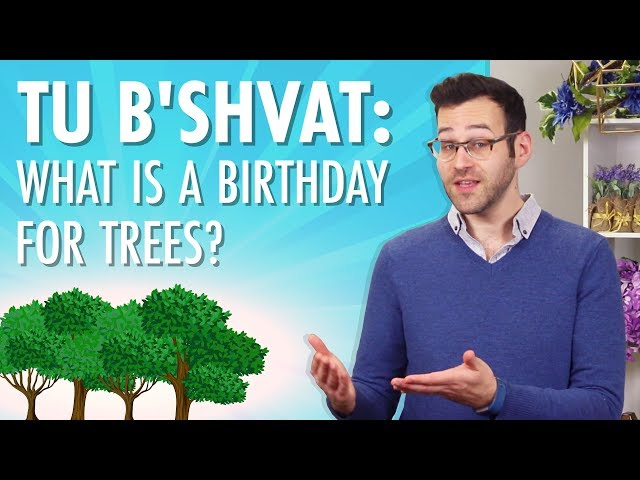 Tu B'Shvat: What Is A Birthday For Trees?