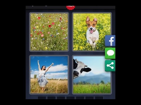 4 Images 1 Mot Niveau 1424 Hd Iphone Android Ios