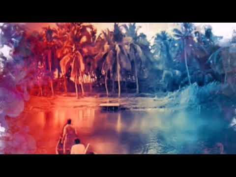Vijanatheerame video lyrics | Theevandi | Tovino |