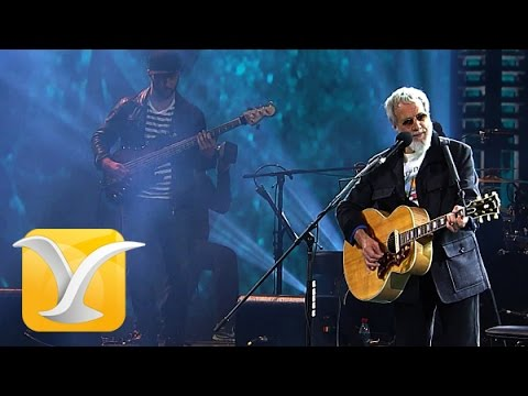 Cat Stevens - Wild World (Festival del Viña 2015)