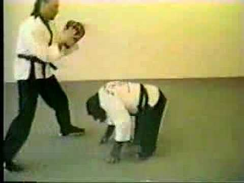 Monkey Kung-fu Karate Judo Scimmia Video Divertente Debo