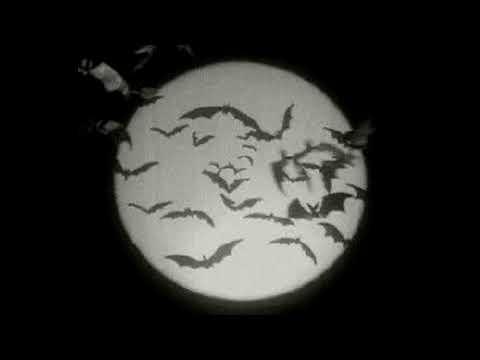"Download Metro Boomin x Earl Sweatshirt type beat ""1st World Problems"" Prod. Righteous"