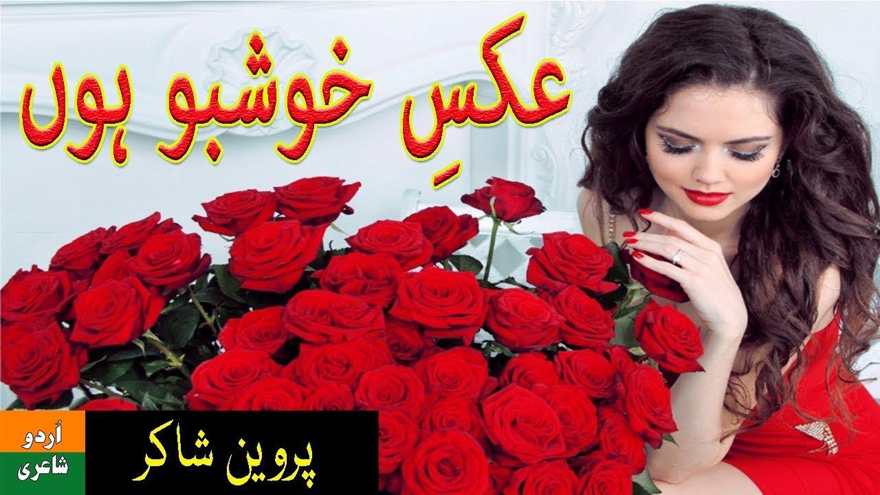 Aks E Khushboo Parveen Shakir Pdf