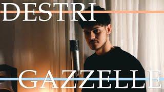 Destri - gazzelle (cover)