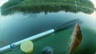рыбалка на оз.Бабинское. ловим на поплавок.