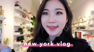 figcaption 🇺🇸NYC Vlog : Beauty Spots You MUST Check Out in New York