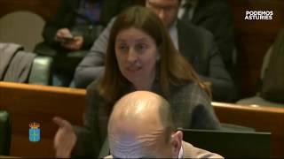 ¿Cuál ha sido su motivación para proponer al Presidente del Consejo Social de UNIOVI?