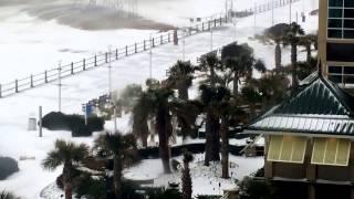 T-rex on virginia beach boardwalk during blizzard 2017 -