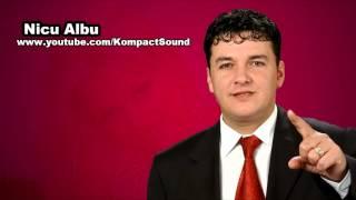 Nicu Albu - Vecina Muzica de petrecere (Audio Original)