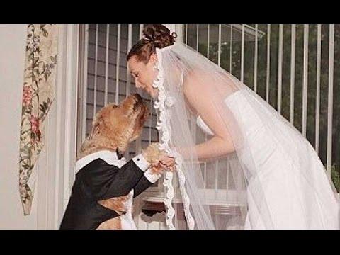 أغرب 5 حالات زواج فى العالم , لن تصدق انها حدثت .. !! thumbnail