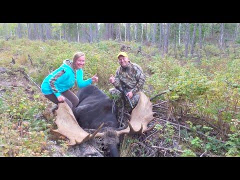 Maine Moose Hunt (MASTC #1 Bull In Maine For 2015)