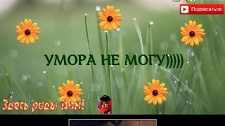 УГАРНЫЕ ПОДБОРКИ НА ВСЕ 100))ПРО ЖИВОТНЫХ