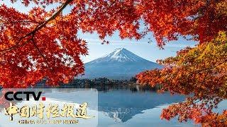 [中国财经报道]日本将对中国游客逐步开启网上签证通道  CCTV财经