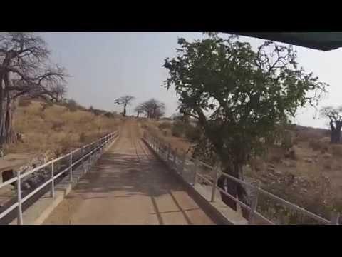 |African journey| Ruaha National Park, Tanzania